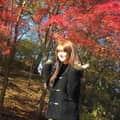 【紅葉と桜】
