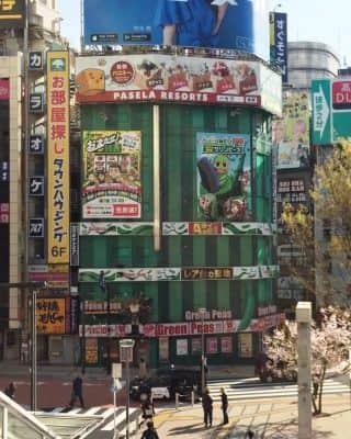 東京都 グリンピース新宿本店 新宿区新宿 外観写真