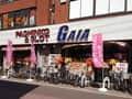 ガイア武蔵新田店