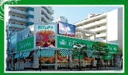 東京都 パラッツォ篠崎店 江戸川区篠崎町 外観写真