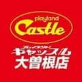 愛知県 プレイランドキャッスル大曽根店 名古屋市東区東大曽根町 ロゴ