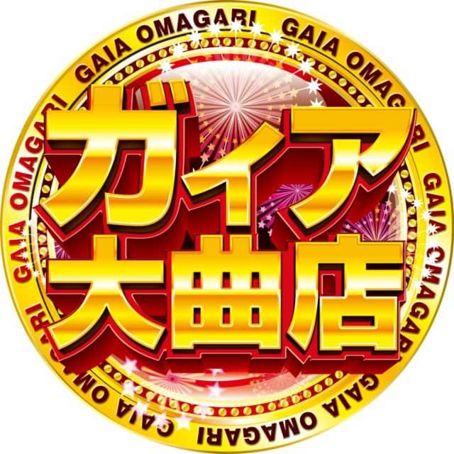秋田県 ガイア大曲店 大仙市花館 画像1