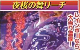 夜桜の舞チャンスアップ