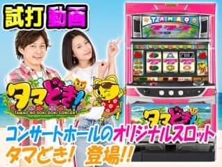 【タマどき!】導入前の試打解説動画!