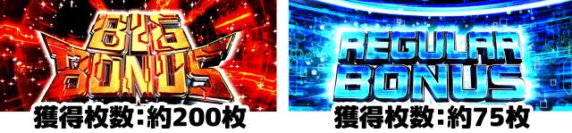 ファンタシースターオンライン2 ボーナス