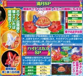 CRスーパー海物語IN沖縄4のハイビスカスモード中・リーチアクションの信頼度の一覧表