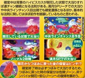 スーパー海物語IN沖縄4 MTCのハイビスカスモード中確変時の連チャンの法則