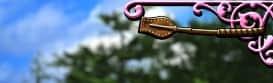 G1優駿倶楽部2(ジーワンダービークラブ2)のムチ銅の小
