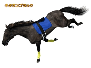 G1優駿倶楽部2(ダービークラブ2)の天井短縮