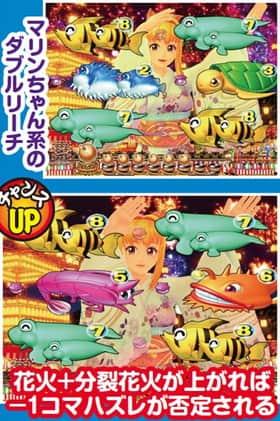 スーパー海物語 IN JAPAN 盆踊りリーチ 信頼度