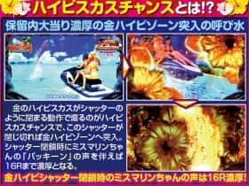 スーパー海物語 IN 沖縄4with アイマリンのハイビスカスチャンス
