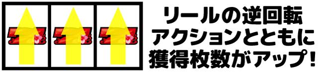 ハイドラ 昇龍