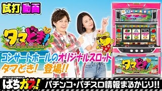 【コンサートホールオリジナルスロット!?】タマどき!試打解説動画