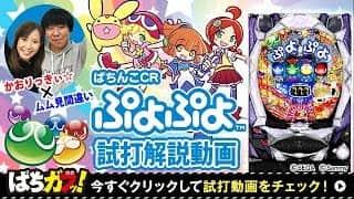 【CRぷよぷよ】導入前の試打解説動画!(パチンコ,スペック,信頼度)